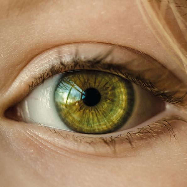 144. Diferencias entre la visión humana y la cámara